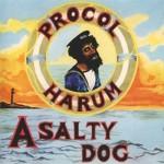 Traduzione testo A Salty Dog (Procol Harum)